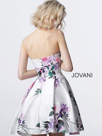 JVN JVN2187