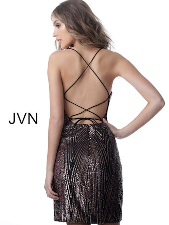 JVN JVN2588