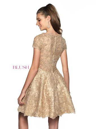 Blush Style #11822