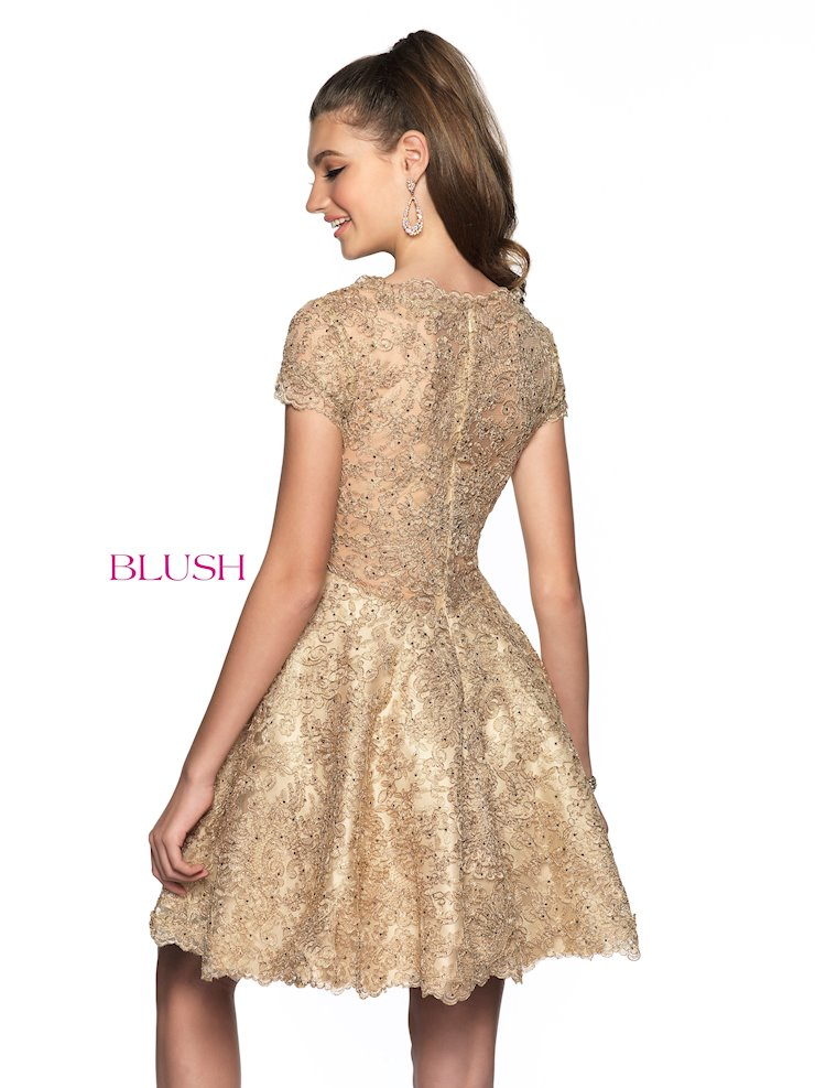 Blush Style 11822