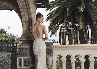 Calla Blanche 19258