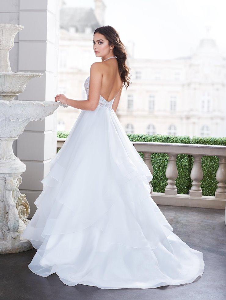 Paloma Blanca 4855