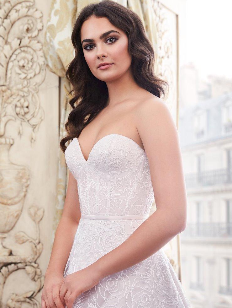 Paloma Blanca 4871