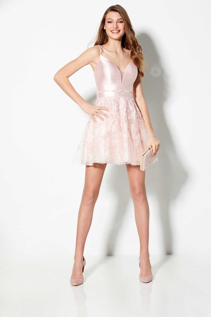 Ellie Wilde Style #EW21914S