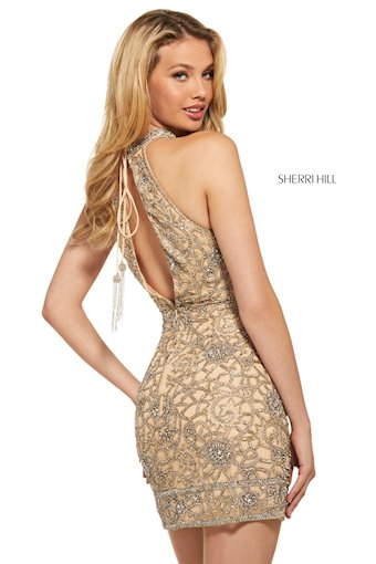 Sherri Hill Style #53017