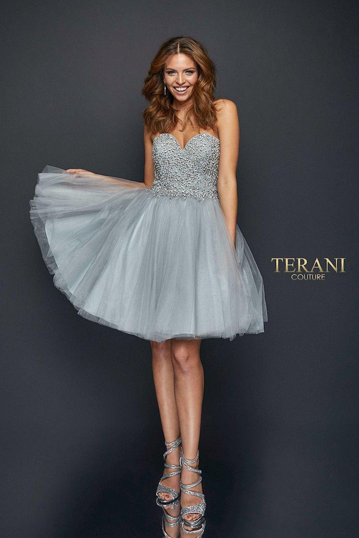 Terani Style #1921H0320