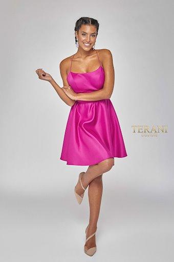 Terani Style #1921H0324