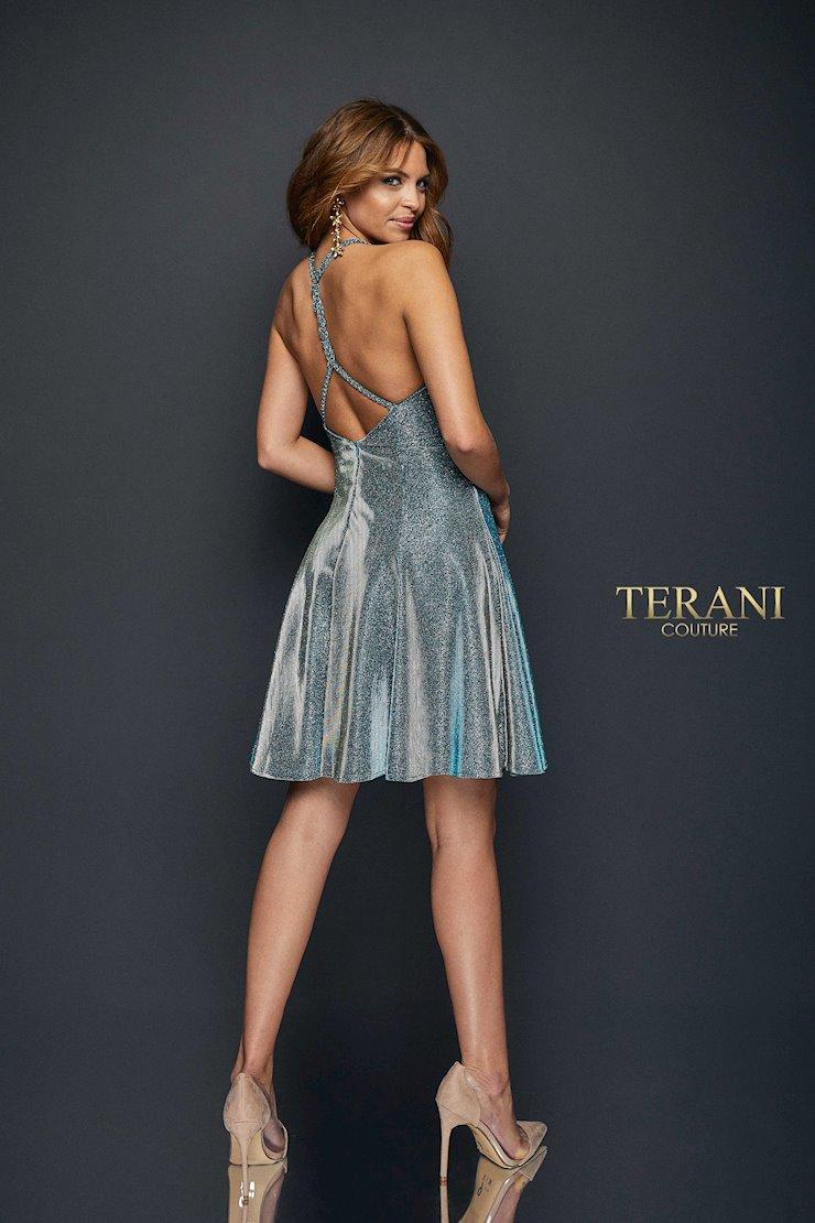 Terani 1921H0336