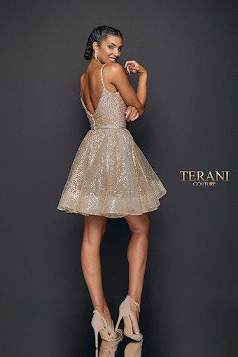 Terani #1922H0420