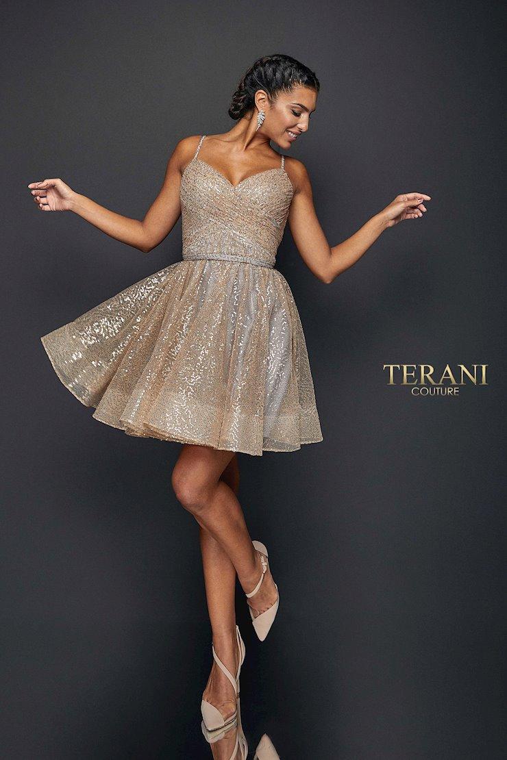 Terani Style #1922H0420