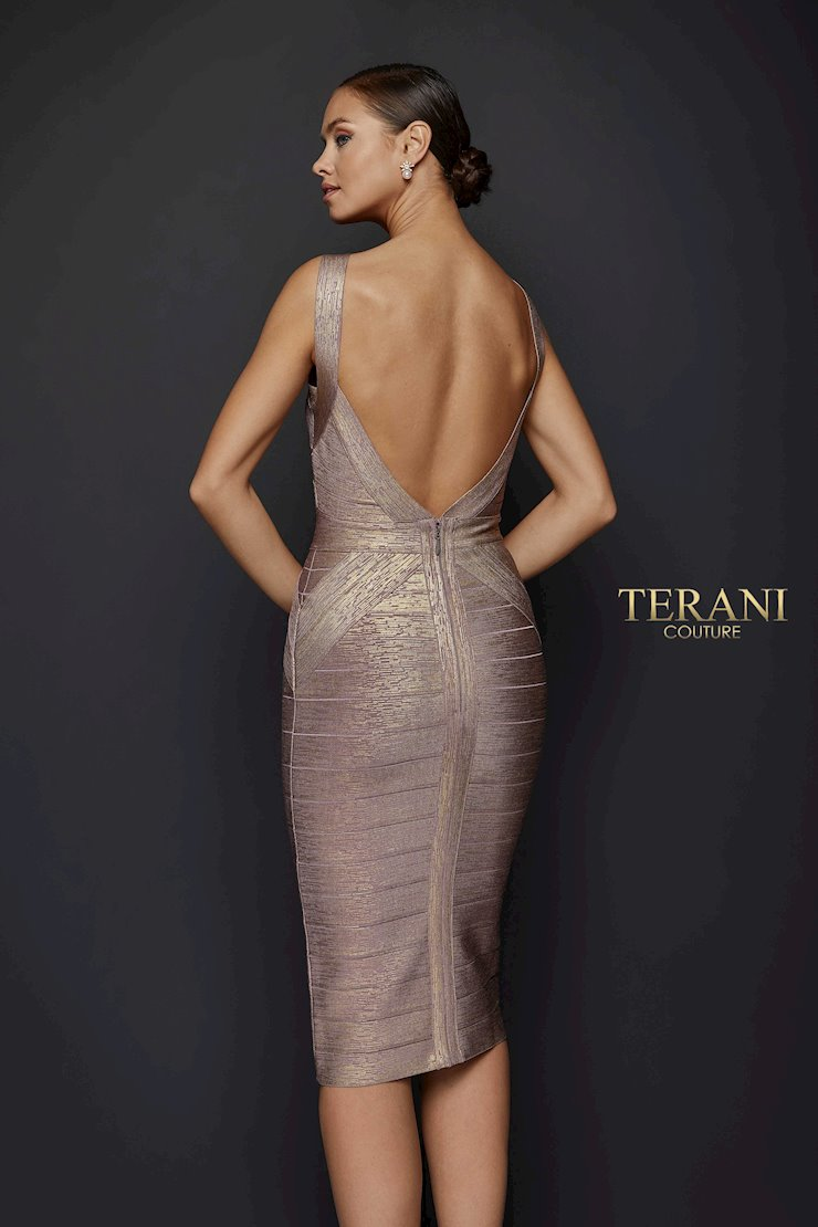 Terani 1921C0011 Image