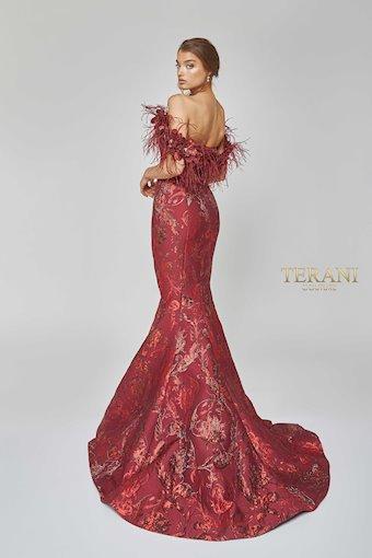 Terani 1921E0136