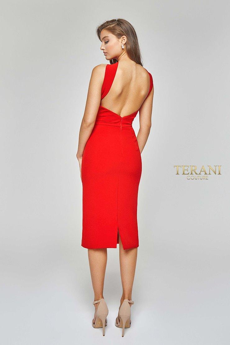 Terani 1922E0234