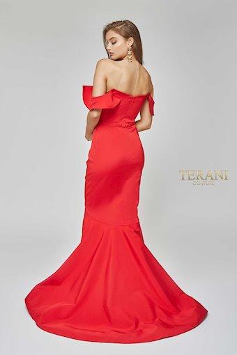 Terani 1922E0255