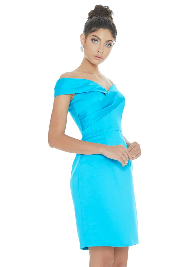 Ashley Lauren Style #4291