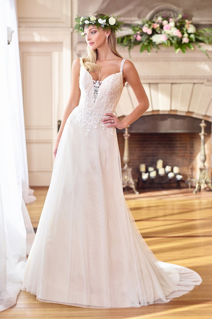 Sweet Lace A-Line Gown with Plunging V-Neckline