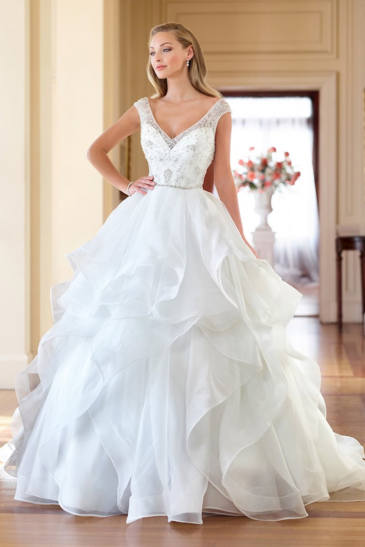 Delightful Tulle and Organza Gown with Illusion Cap Sleeves