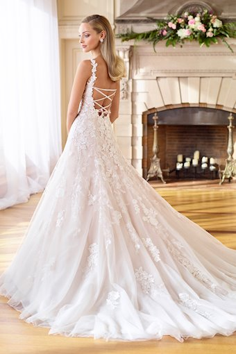 Romantic Lace, Embroidered Tulle and Organza A-Line Gown