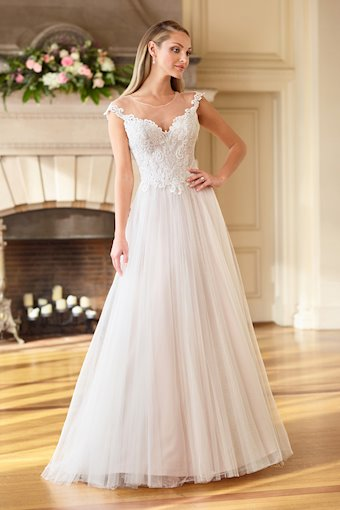 Darling Lace and Tulle A-Line Gown with Illusion Cap Sleeves