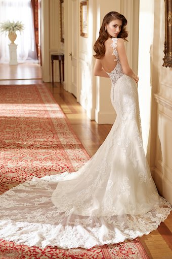 Susie Tulle and Organza Fit and Flare Gown with Illusion Back