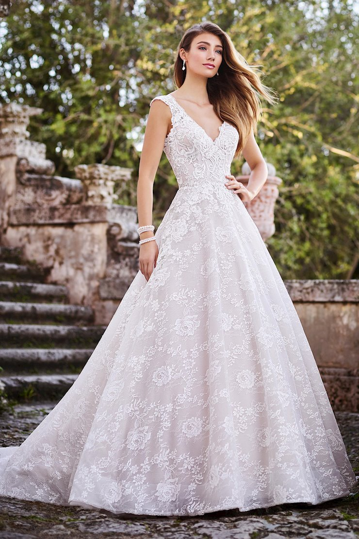 Sofia Knockout Lace and Organza Gown with Cap Sleeves