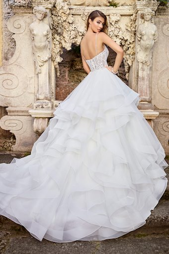 Adele Radiant Sleeveless Gown with Illusion Bodice and Back
