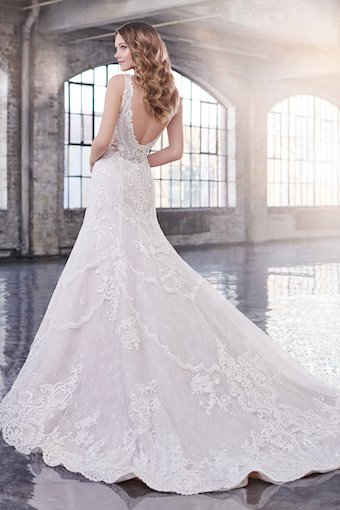 Janet Ultra-Feminine Lace, Tulle and Organza Fit and Flare Gown