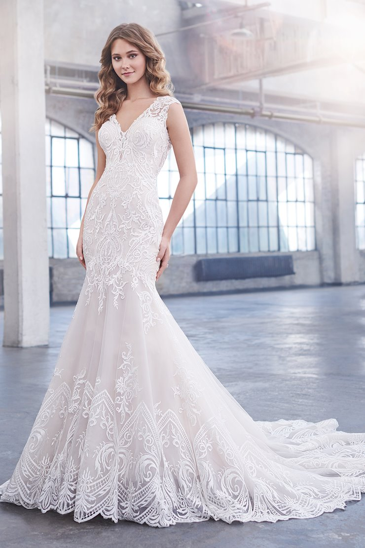 Alanis Delicate Schiffli Lace Fit and Flare Gown