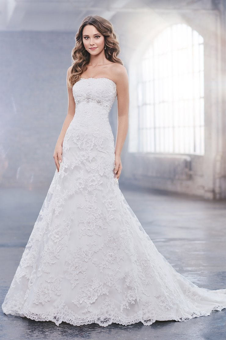 Anita Lovely Strapless Embroidered Lace A-Line Gown