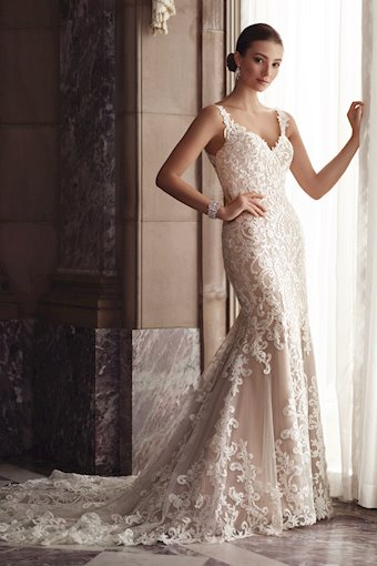 Amber Sleeveless Schiffli Lace Fit and Flare Gown