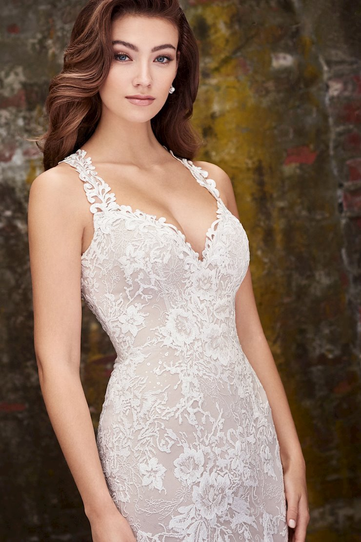 Janine Unique Lace Fit and Flare Gown with Detachable Lace Gauntlet Sleeves