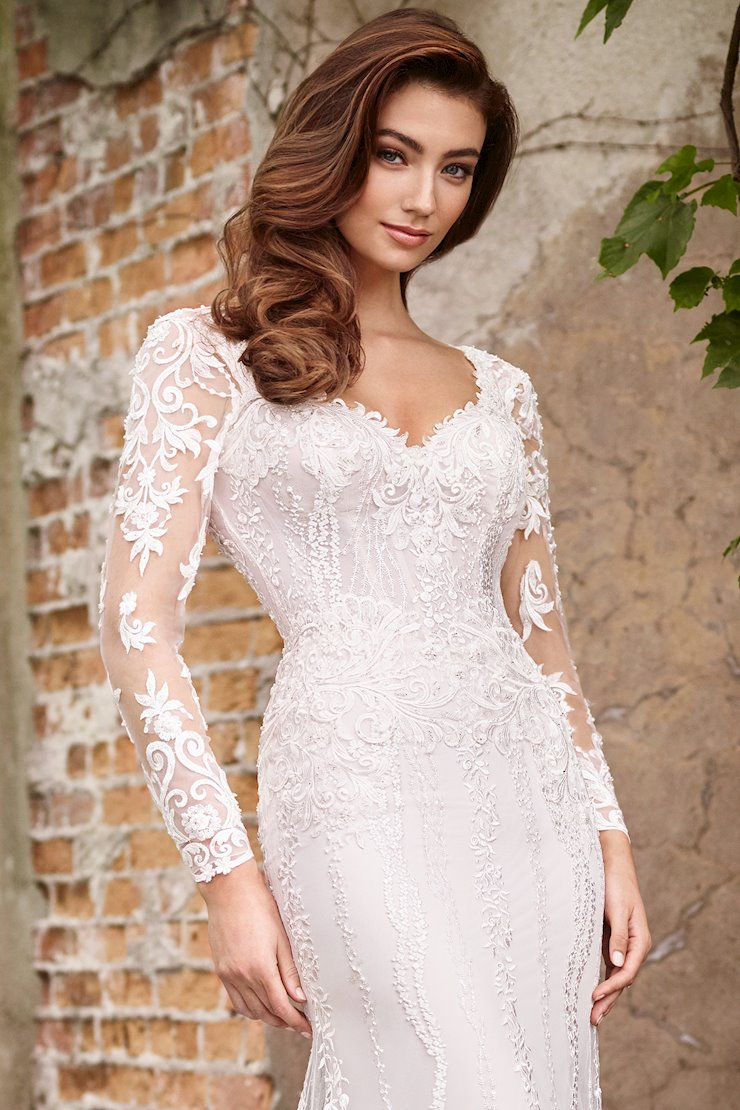 Lace and Tulle Long Sleeves