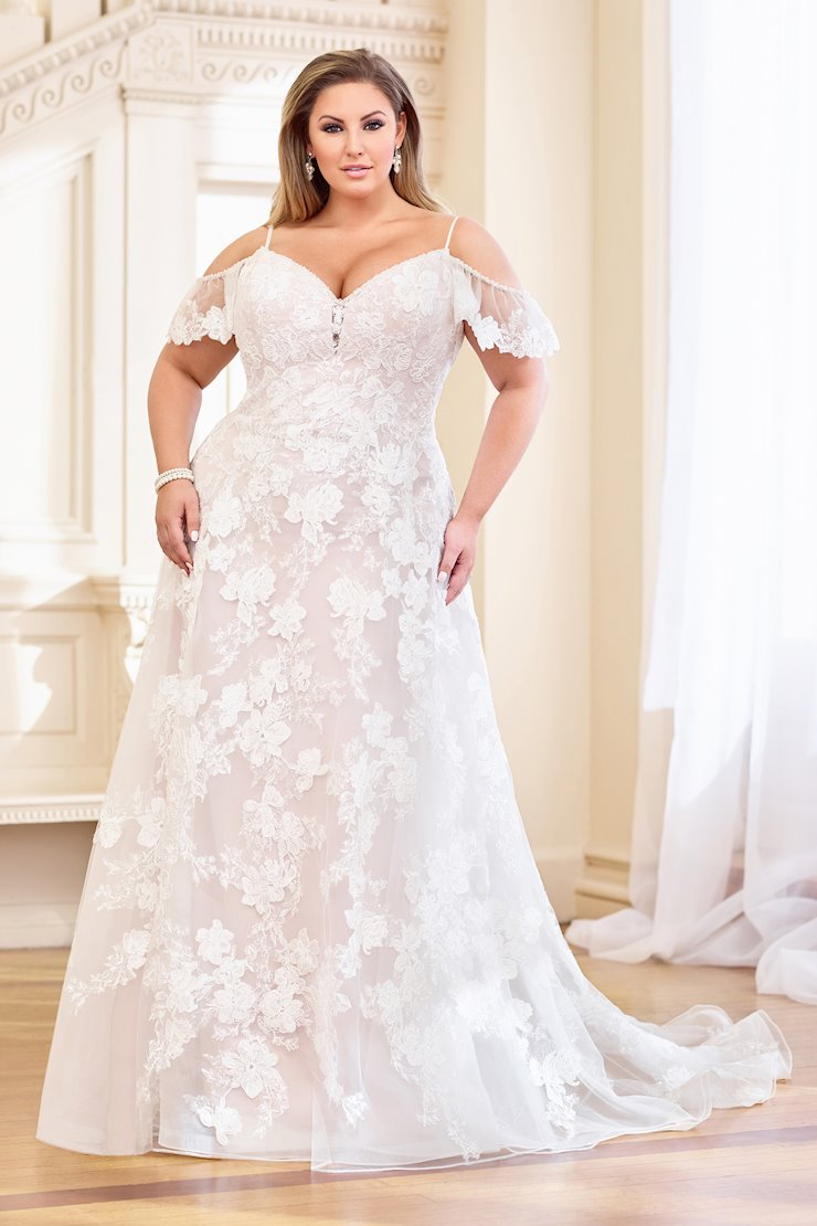 Bohemian Lace Floral and Sequin Organza A-Line Gown, Plus Size