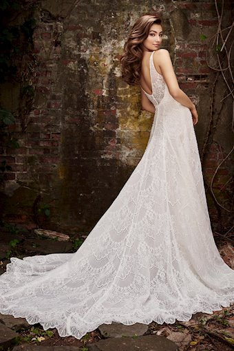 Christine Divine Tulle and Organiza A-Line with Beaded Lace