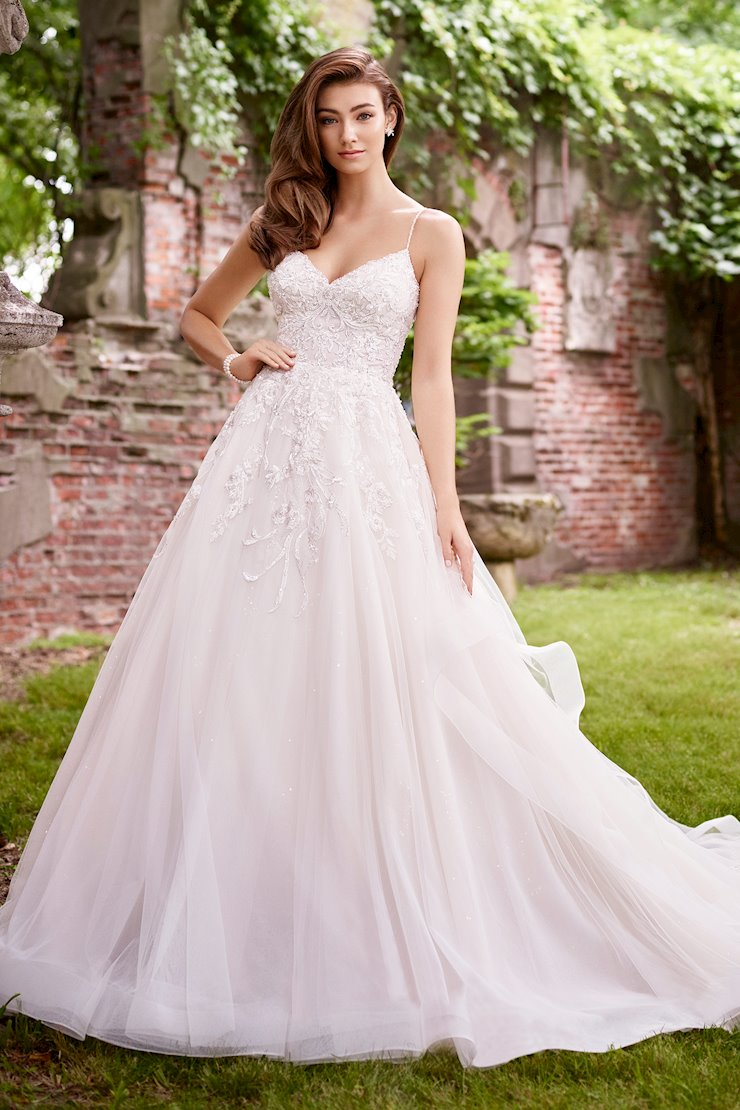 Emily Ravishing Organza and Sequin Tulle Gown with V-Neckline