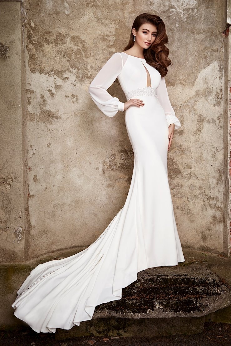Serena Classy Crepe Fit and Flare Gown with Long Sleeves