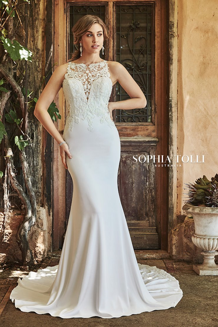 Modern Fit and Flare Gown with Illusion Back Hollie
