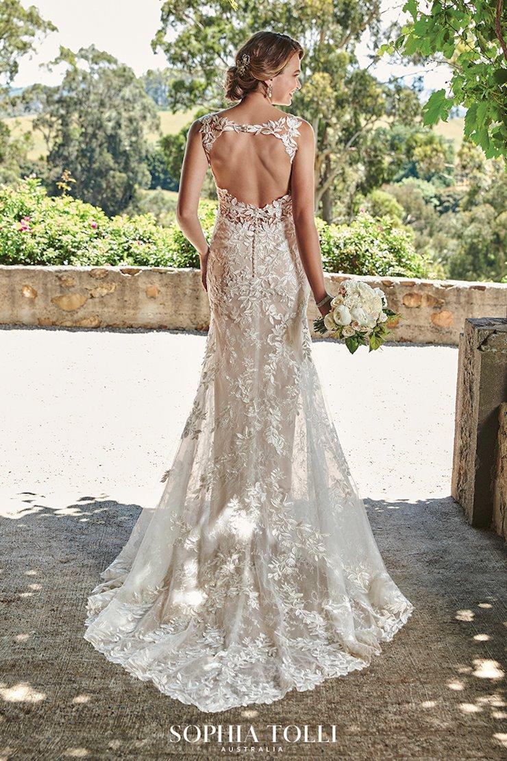 Elegant Bohemian Fit and Glare Gown Ariella