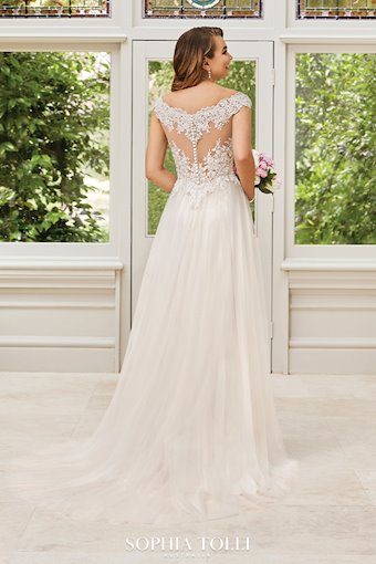 Vintage Boho A-Line with Sheer Back Bianca