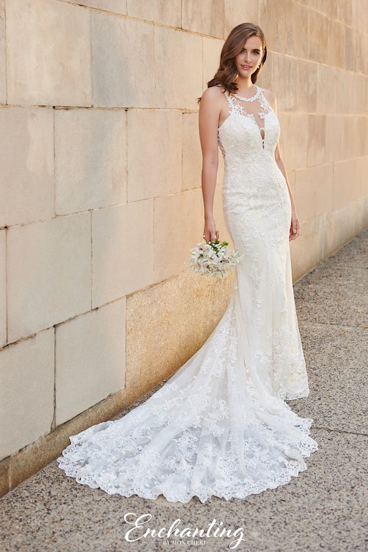 Lovely Lace and Tulle Fit and Flare Gown