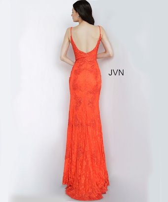 JVN02013