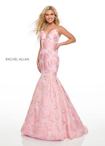Rachel Allan  #7087