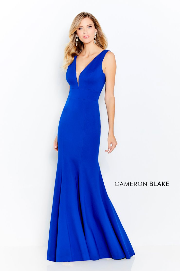 Cameron Blake Style no. 120617  Image