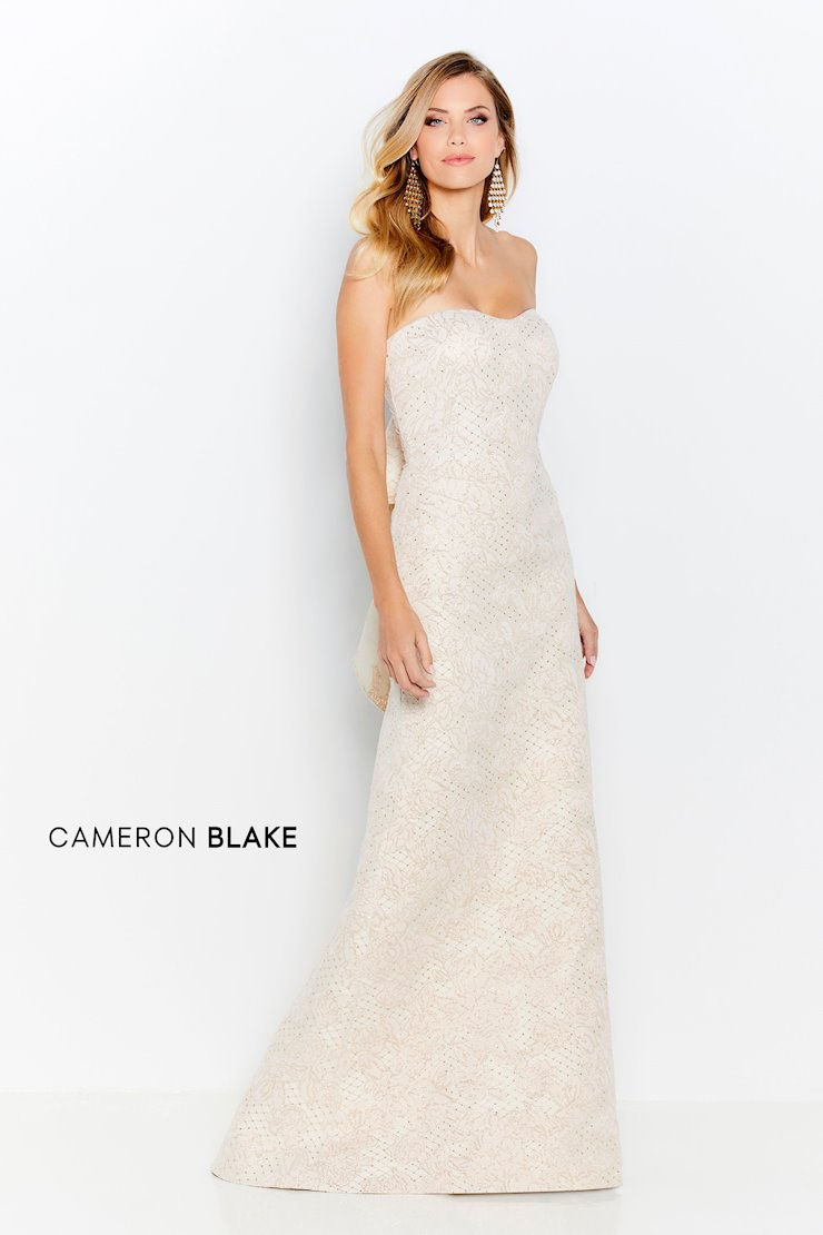 Cameron Blake Style no. 120623  Image