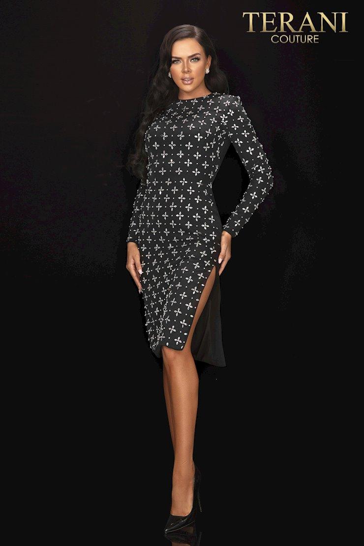 Terani Style 2011C2025  Image
