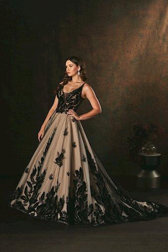 Amare Couture C156