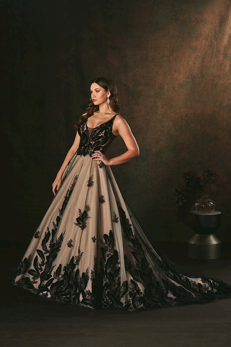 Amare Couture Style #C156 Image