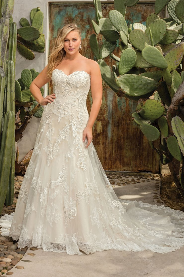 Casablanca Curvy Collection Style #2291C Image