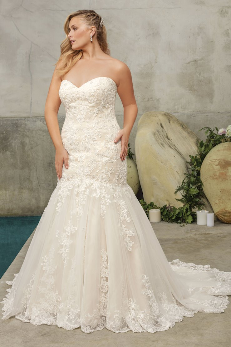 Curvy Collection Style #2293C Image