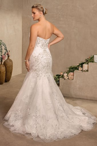 Curvy Collection Style #2304C